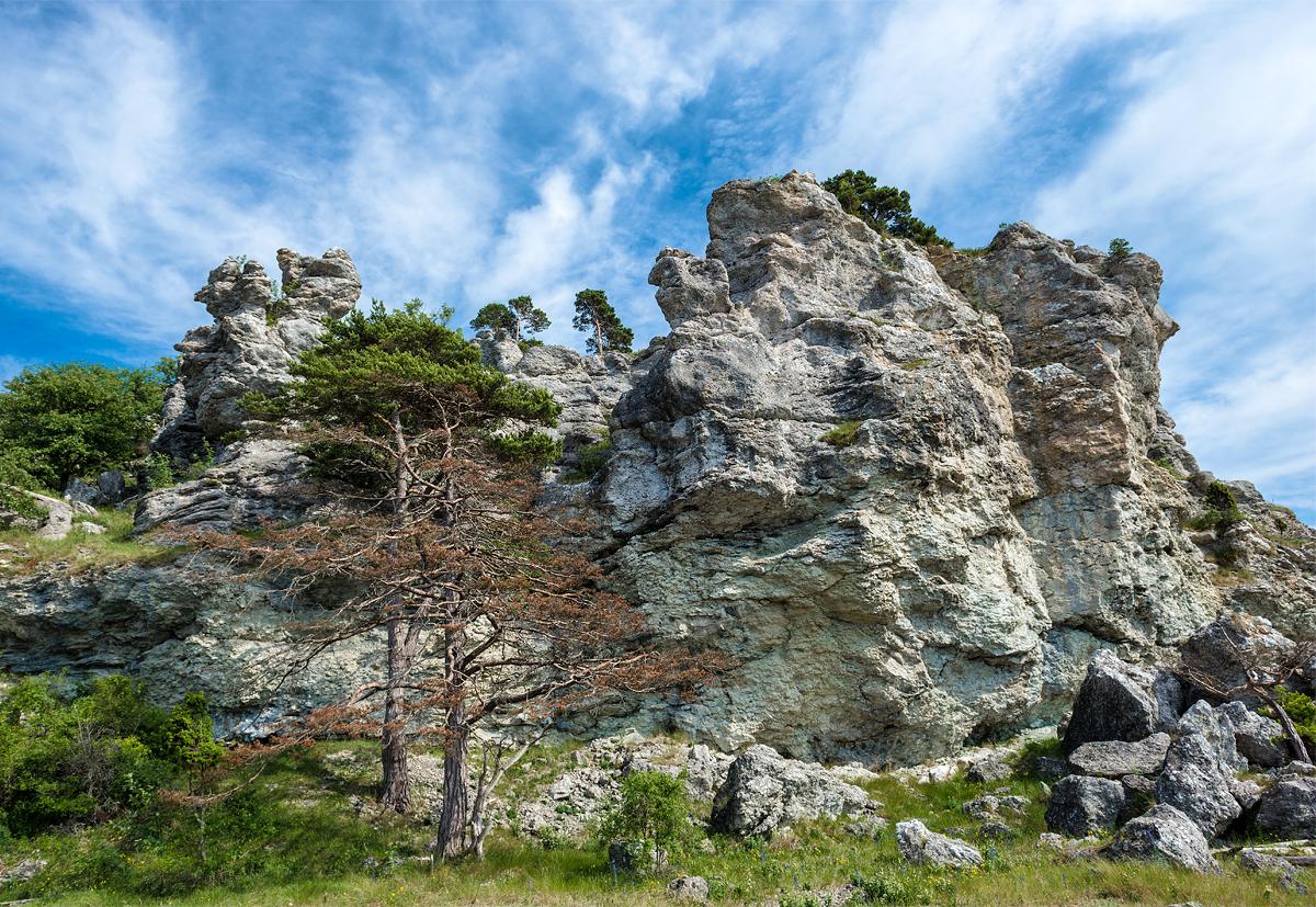 Sigsarve klint1