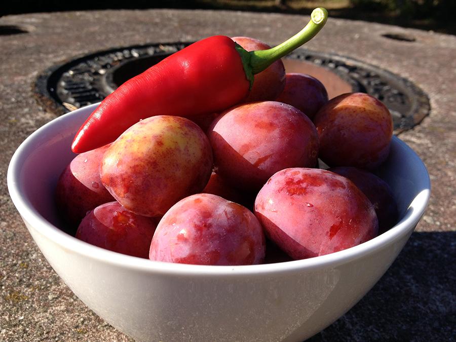 Plommon och chili