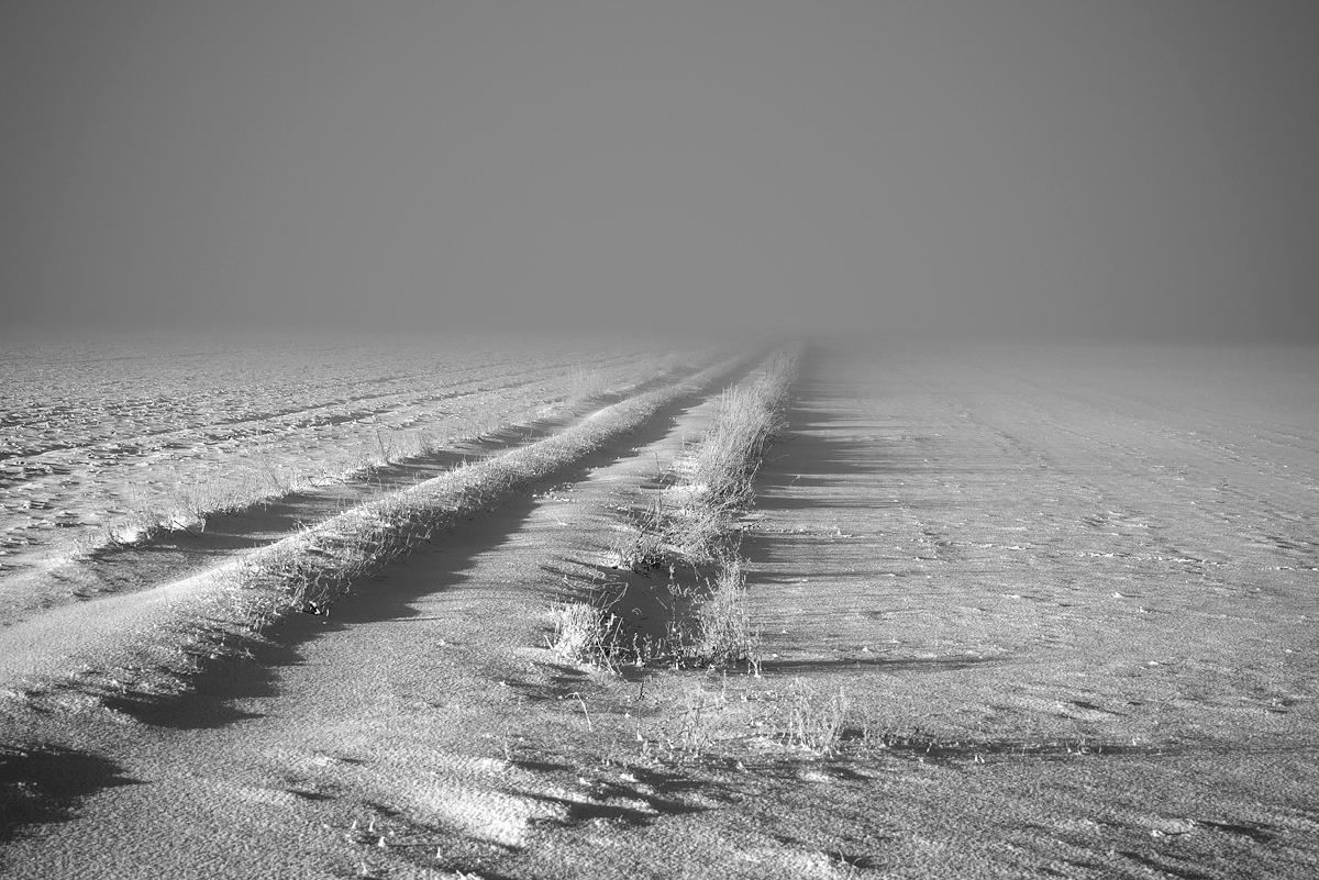 Gotlandsbilder_DB_234_väte_vinter_väg_dimma